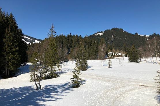 Lila Alpin Resort Kiztbüheler Alpen langlaufen